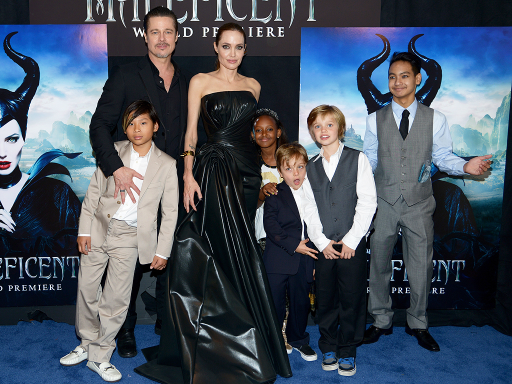Angelina Jolie To Have More Kids