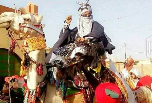 Emir Sanusi Camel