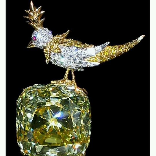 50 Cents Diamond Earring