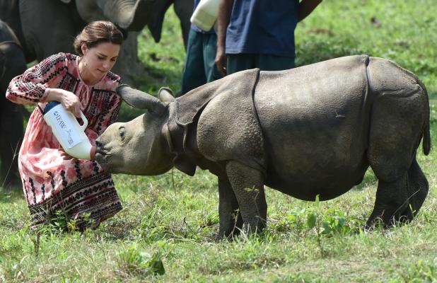 Kate feeding animals2