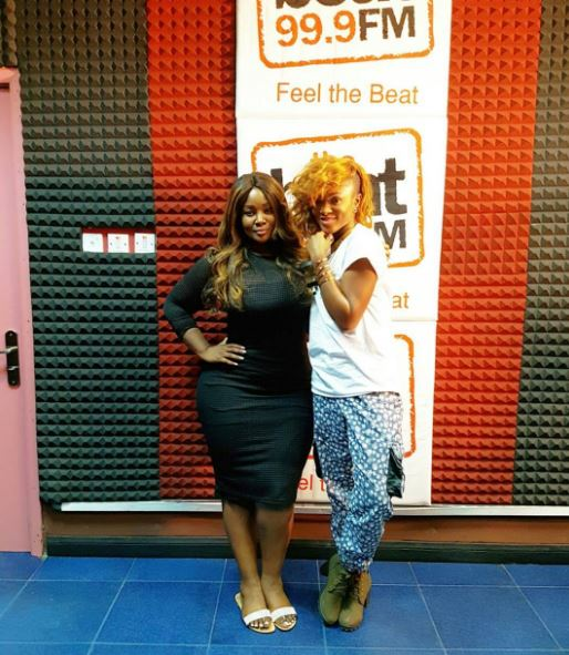 toolz curves1