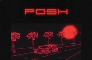 Mayorkun Posh Lyrics