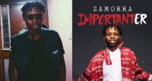 Zamorra Importanter