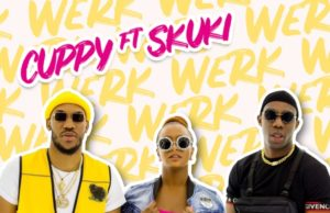 DJ Cuppy Werk Lyrics