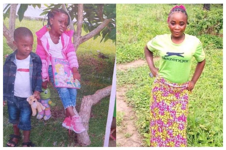 Nanny allegedly abducts boss kids