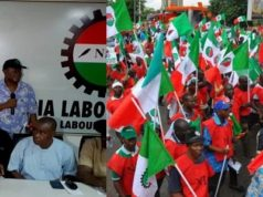 nlc mass protest