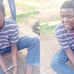 Primary school teacher arrested