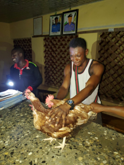 Poultry worker who steals