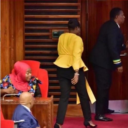 Tanzania female MP thrown